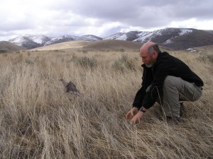 researcher kneeling in field