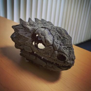 3-D printed skull