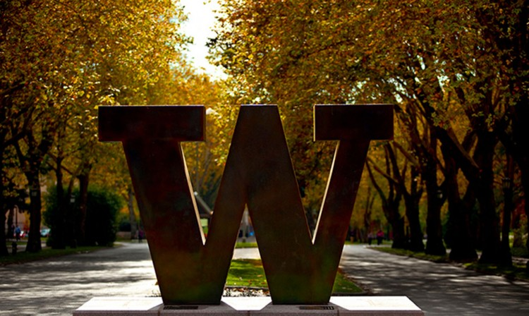 bronze W