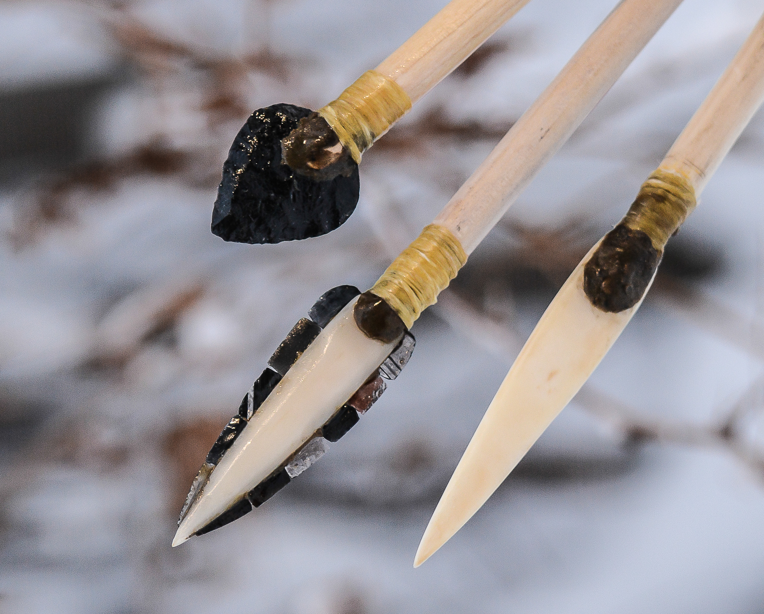 University of Washington researchers reconstructed ancient projectile points to test their effectiveness on post-Ice Age prey. From left to right: stone, microblade and bone tips.
