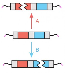 Representation of a logic gate