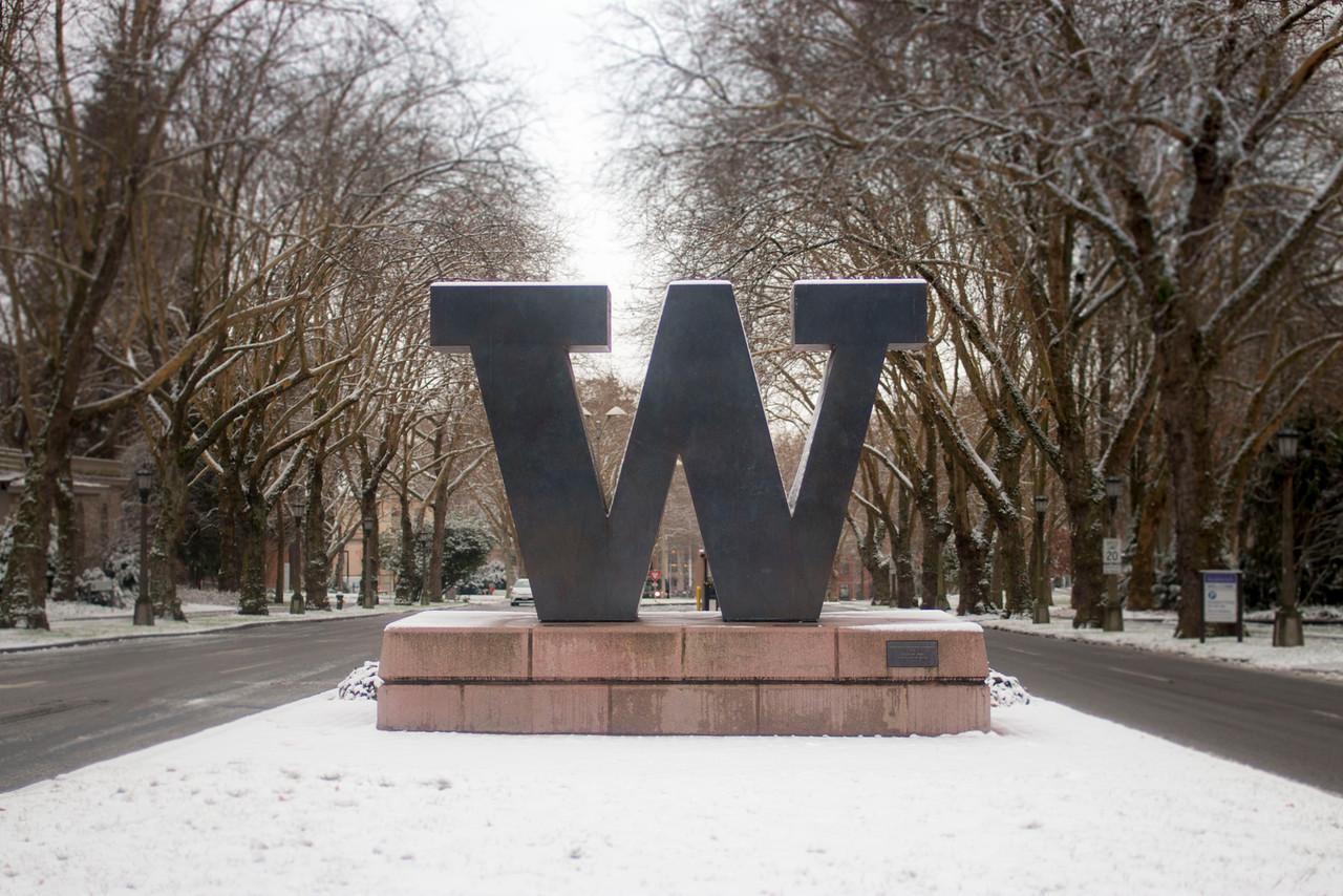 Snowy W