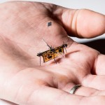 RoboFly in an engineer's hand