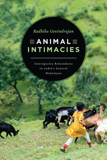 """Animal Intimacies,"" by UW assistant professor of anthropology Radhika Govindrajan, was published by University of Chicago Press."