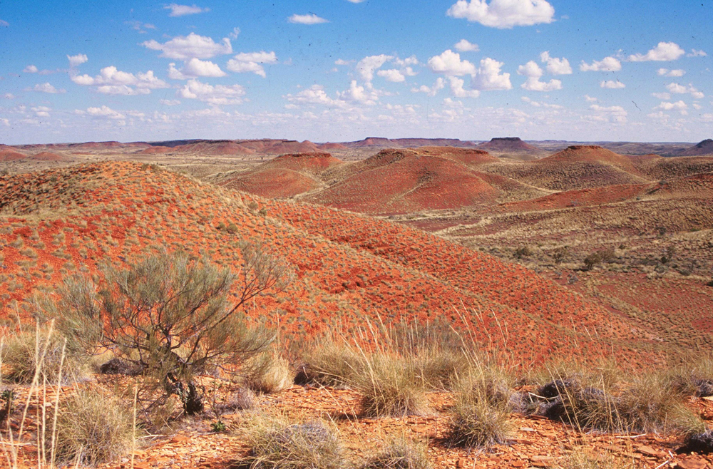 "The Jeerinah Formation in Western Australia, where a UW-led team found a nitrogen isotope ""excursion."" ""Nitrogen isotopes tell a story about oxygenation of the surface ocean, and this oxygenation spans hundreds of kilometers across a marine basin and lasts for somewhere less than 50 million years,"" said lead author Matt Koehler."