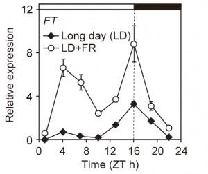 A figure from a scientific paper