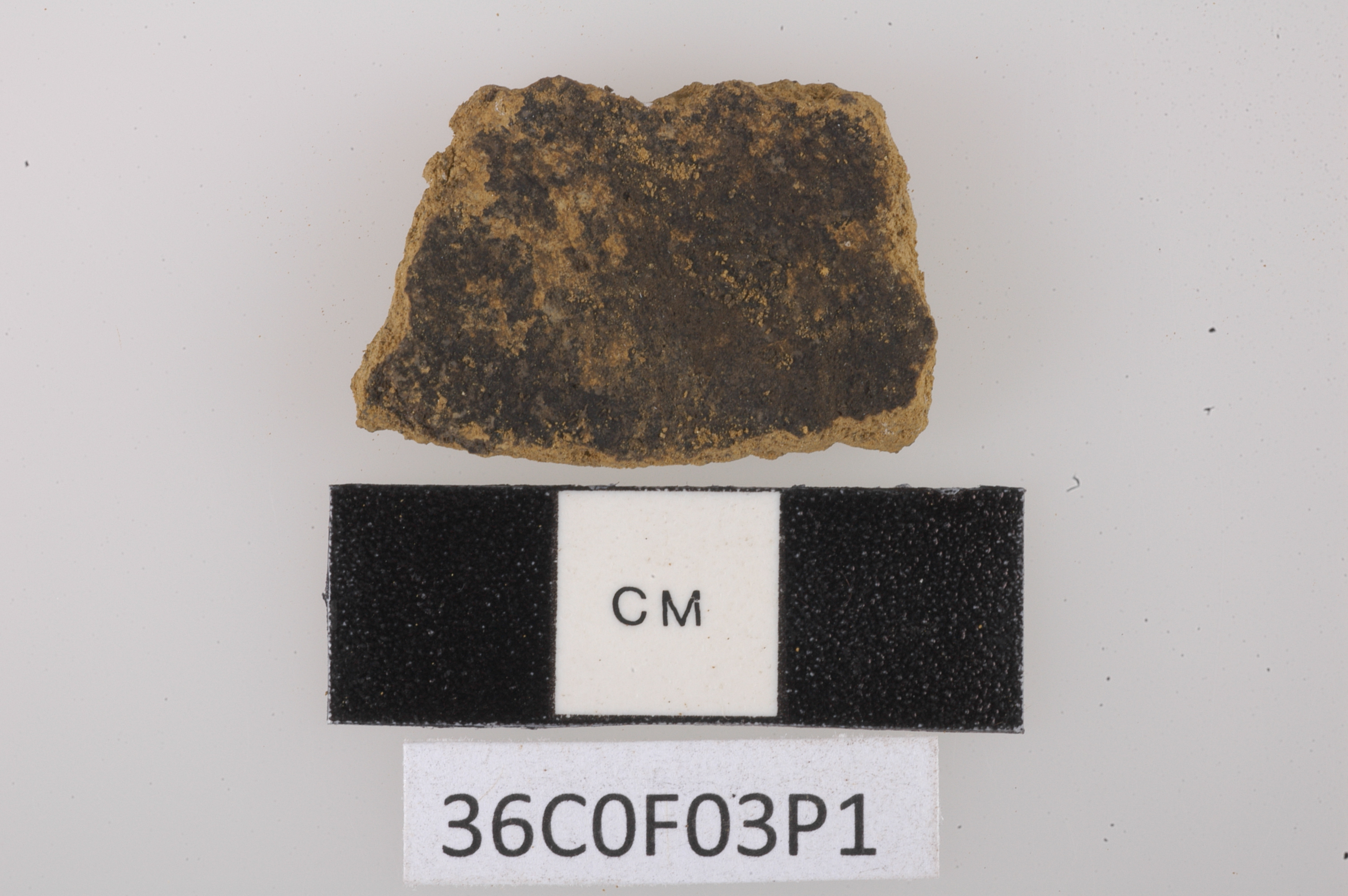 3,500-year-old pumpkin spice? Archaeologists find earliest