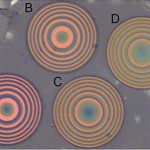 An image of four lenses under a microscope.