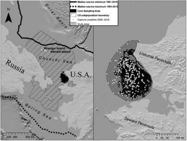 black and white map of Chukchi Sea