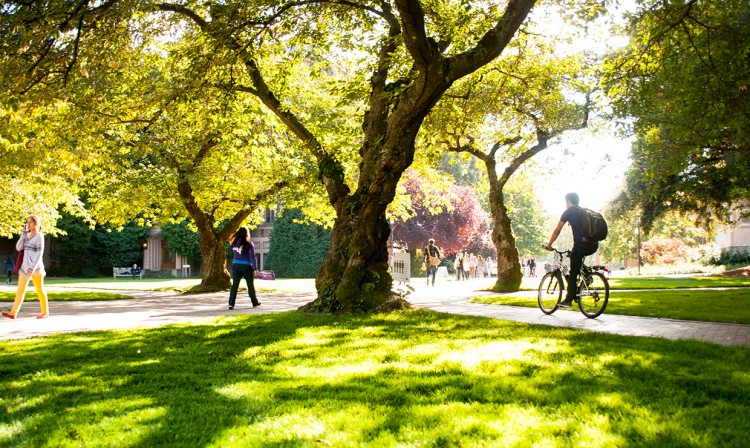 bicyclist riding through the quad on a sunny day