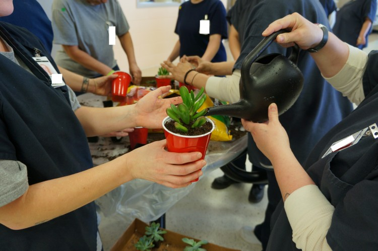 Exposure to nature, even through a brief gardening activity, can improve well-being among women in prison, a UW Tacoma-led study finds. Photo of women watering a plant.