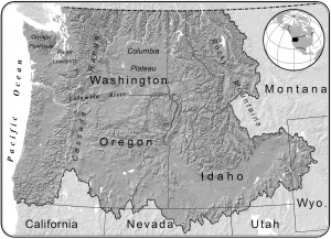 gray map of Northwest states