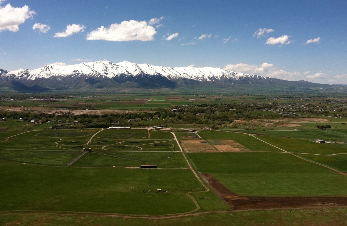 green fields with mountains in background