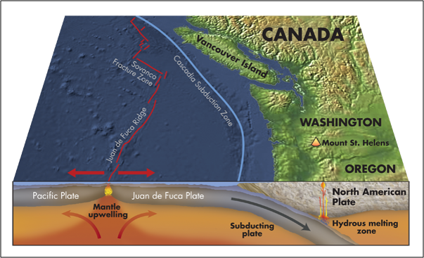 cartoon of Washington coast geology