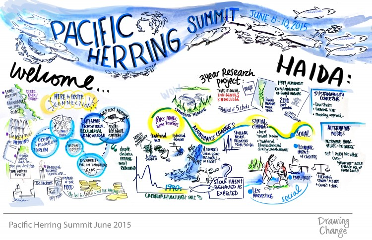 This drawing and others were compiled during the summit and offer a visual representation of the perspectives on herring presented during the meeting.