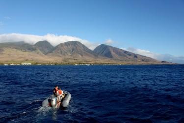 Lahaina, West Maui