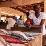 man selling fish