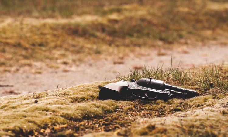 Gun in field grass