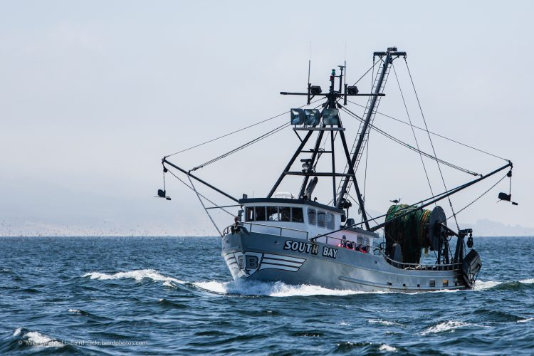 a fishing vessel in california