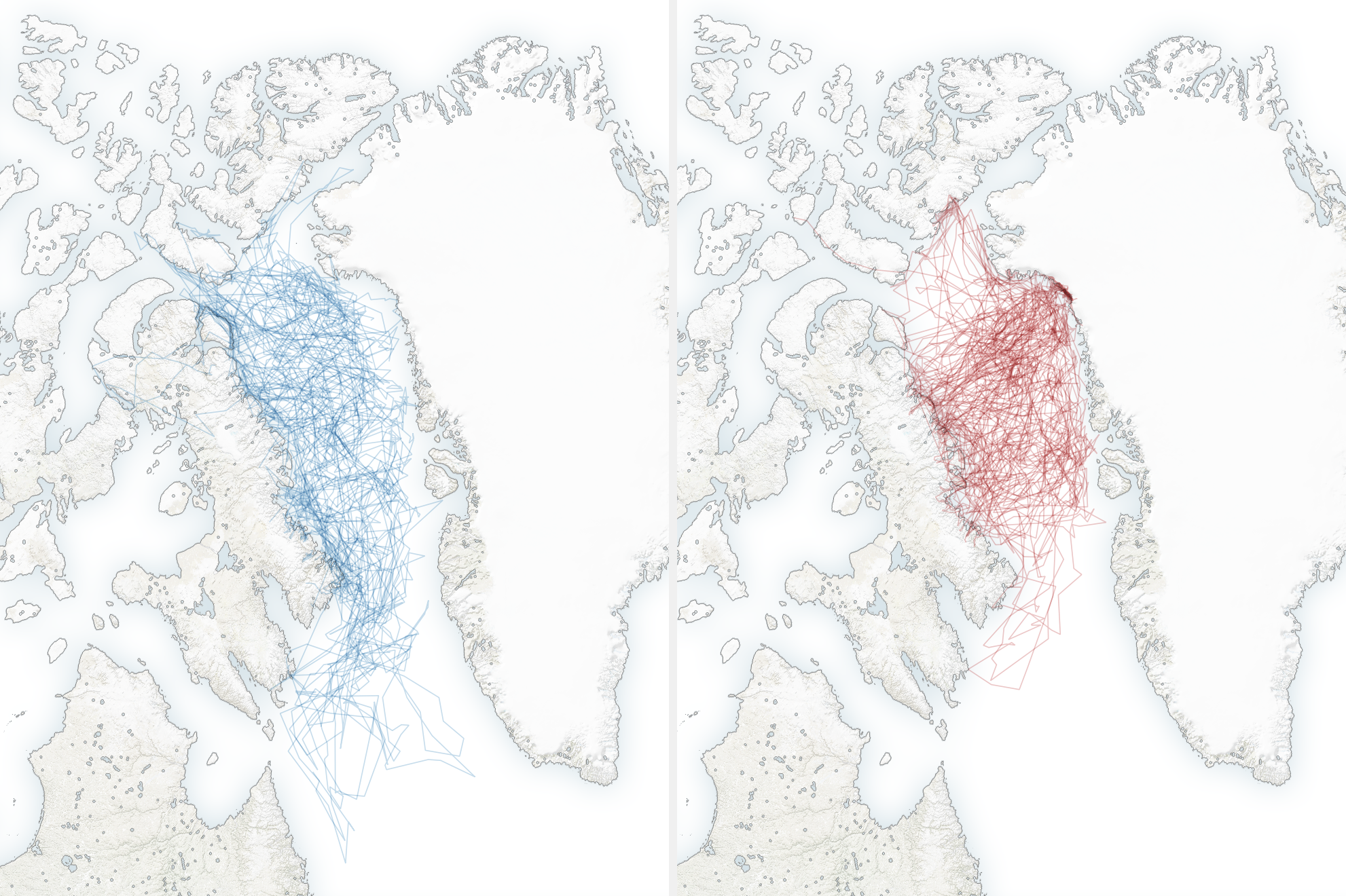 The map on the left shows a wider range of polar bear movement over the bay than the more recent map on the right
