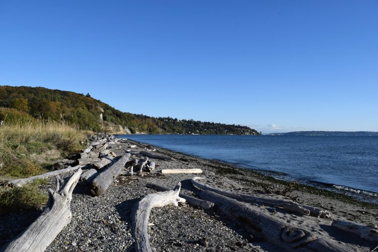 beach in seattle
