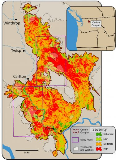 map showing fire severity