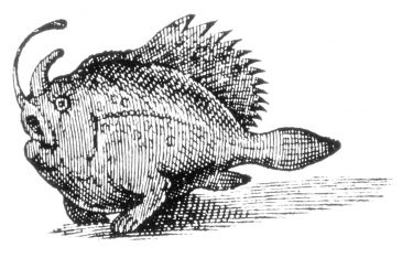 A woodcut of a strange fish seen off the coast of Northeastern Brazil and published in 1633 under the name Pira Vtoewah, forma monstrosa. Artist unknown.