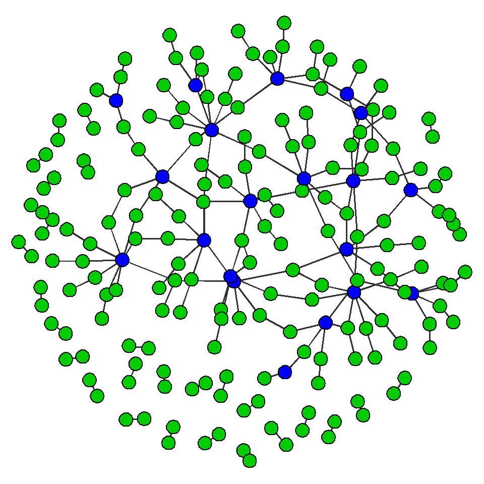 network with pervasive connections throughout
