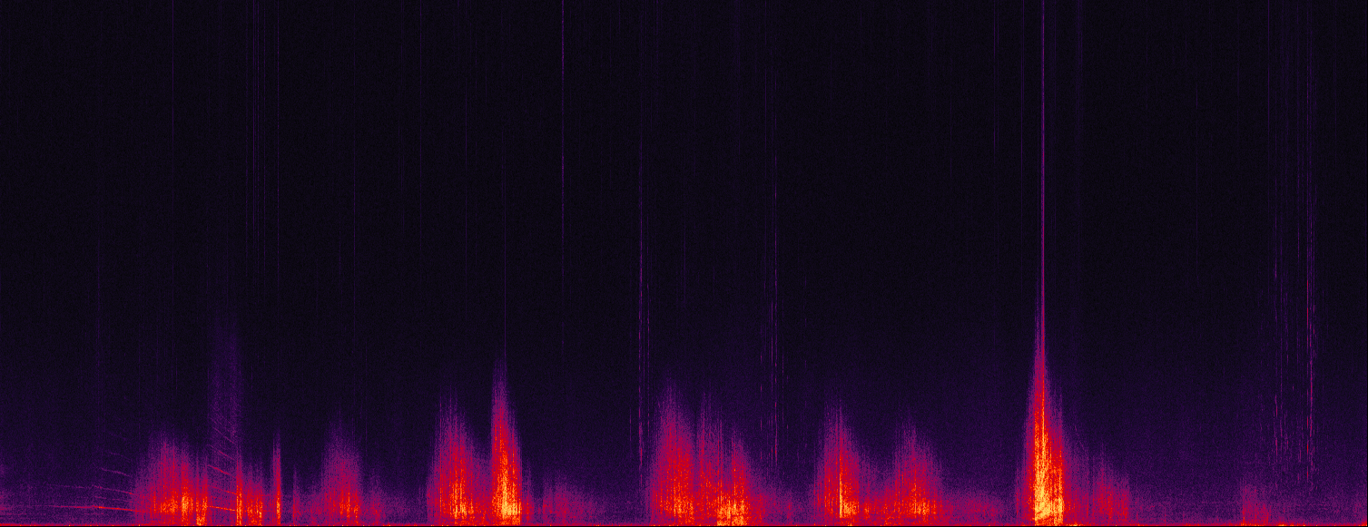 A visual graph showing the variety of sounds collected during a one-hour period at third beach.