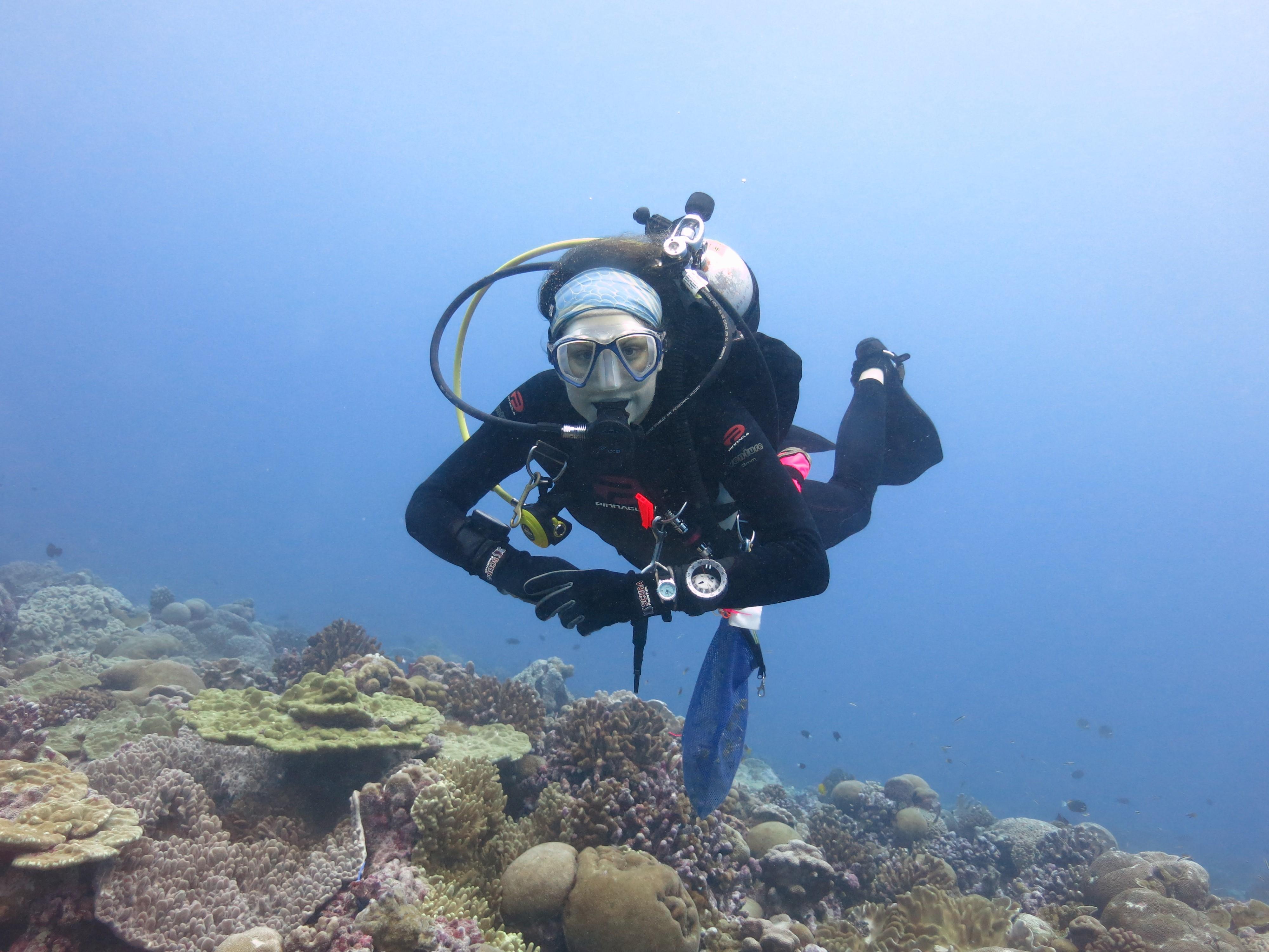 Claar scuba dives near corals