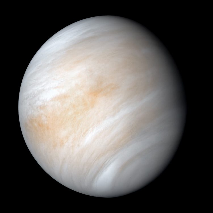 An image of the planet Venus, showing its thick atmosphere.
