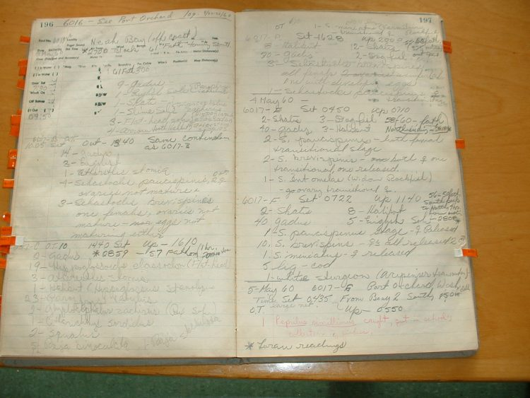 an example logbook page