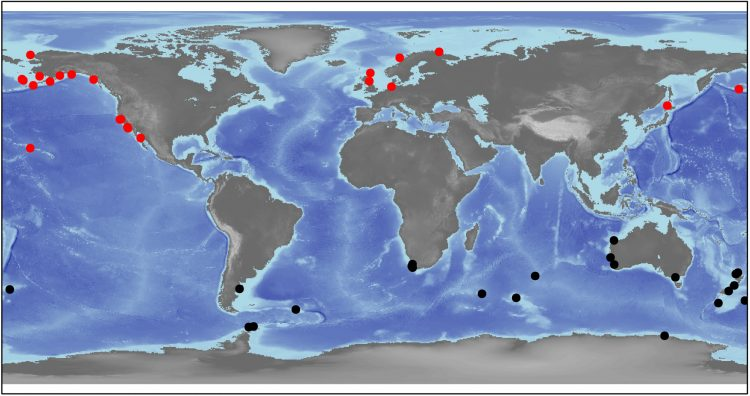 a map of the world with dots indicating the study sites for this new research on seabirds