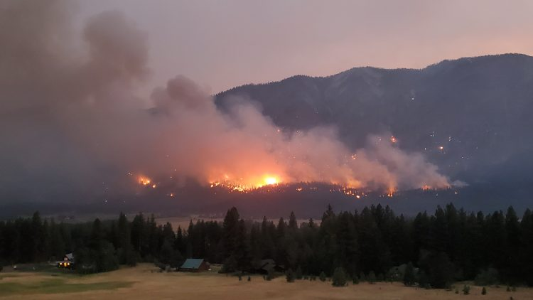 New report: State of the science on western wildfires, forests and climate change - UW News