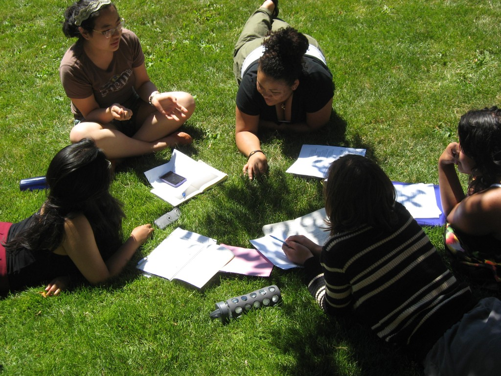 Students discussing research on the grass