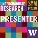 Multi-colored checkerboard pattern zoom profile for presenters