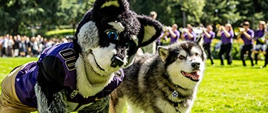 Presidents Picnic Harry Husky mascot and Dubs