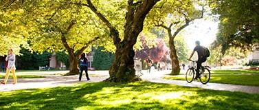 Fall Campus scene on the quad