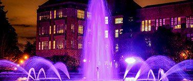 Fountain in purple lights