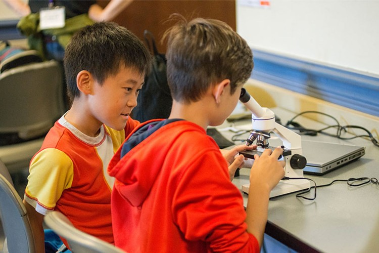 Image of students looking into a microscope