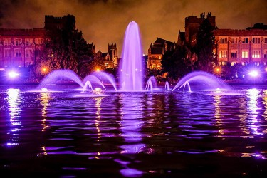summer-2017-purple-fountain
