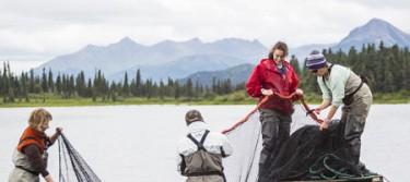 Alaska Salmon Program - Workers gather fishing nets