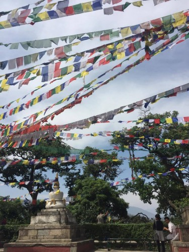 Amin visited Swayambhunath, a Buddhist temple in Kathmandu, Nepal, for a moment of respite before going to work on Her Farm, which hosts women in need of a safe place.