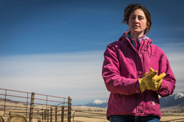 Montana rancher Hilary Anderson works in the Tom Miner Basin, just north of the Yellowstone border.