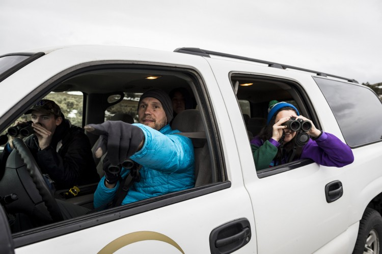 "Wirsing (in blue) points out where students might see wildlife. During this trip, they conducted elk surveys — called ""follows"" — to learn more about how much elk scan their surroundings in known wolf ranges, and how that watchfulness might affect their overall health."