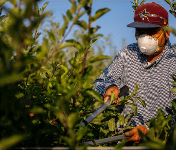 Farm worker,