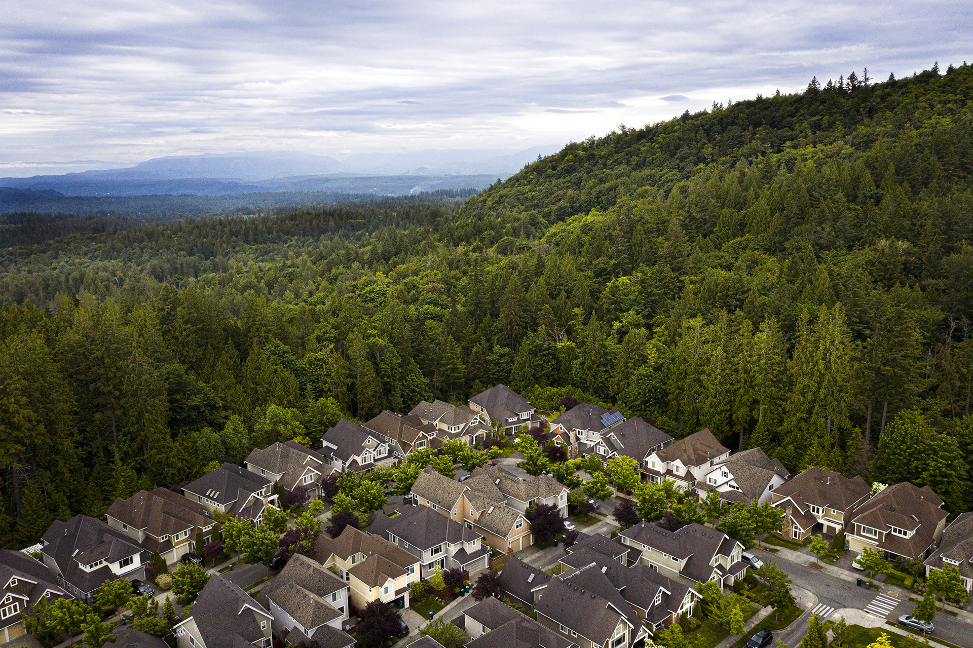 Aerial view of homes and forest