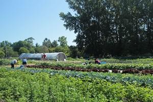 UW Farm with students
