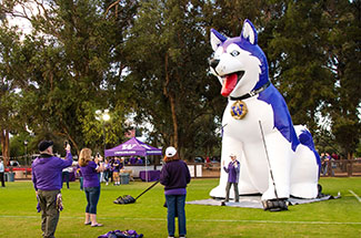 Large inflatable dog