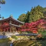 Chionin temple in Kyoto